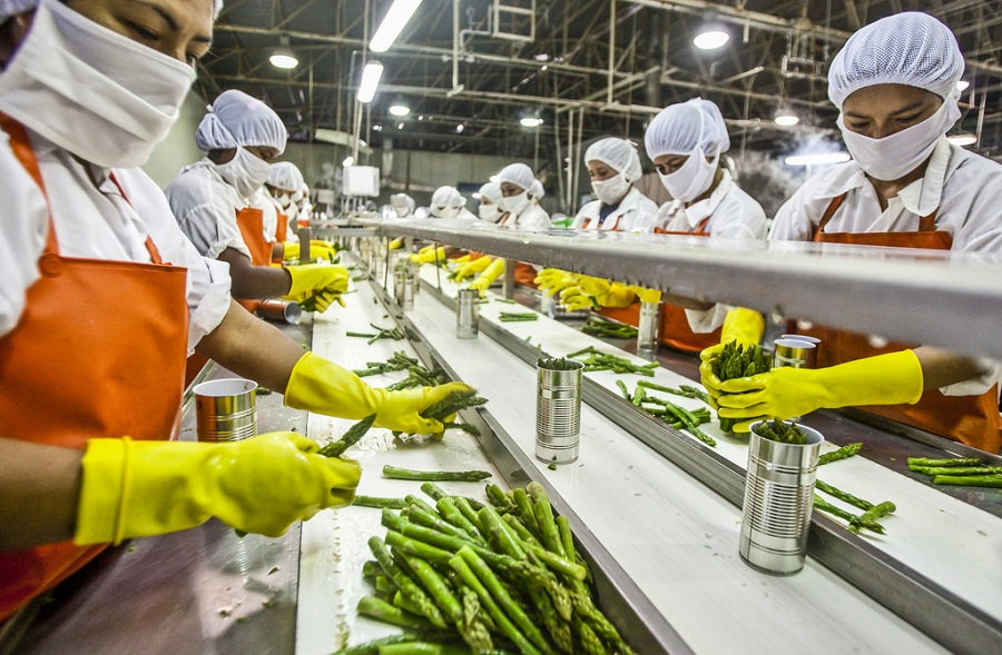 Centre approves Rs 107.42 crore grant for 28 food processing projects in 10 states